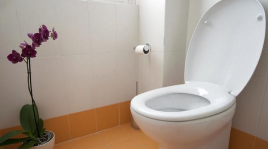 Jasa Sedot WC Kota Surabaya